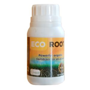 Phân bón hữu cơ eco root